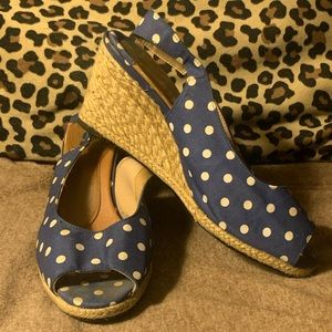 Rose Petals Blue with White Polka Dot Wedges